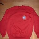 Fanartikel: Pullover (vorne)